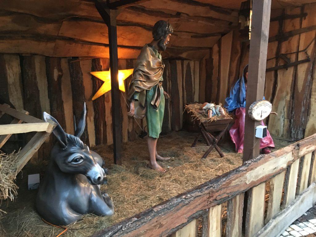Die Jesu-Krippe hat ihren neuen Platz auf dem Luisenplatz gefunden