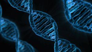 Symbolbild: Mehr Möglichkeiten bei DNA-Fahndung