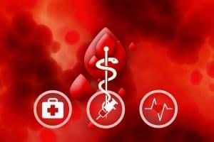 Symbolbild: Für mehr Blutspenden: FDP fordert Ende des Verbots für Homosexuelle