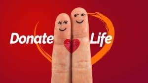 Symbolbild: Mehr Organspenden zu Beginn des Jahres