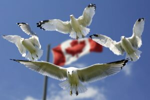 Symbolbild: Kanada: Massengrab mit 215 indigener Kinder