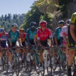 """Symbolbild: Tour de France: """"Schäme mich für Dummheit"""""""
